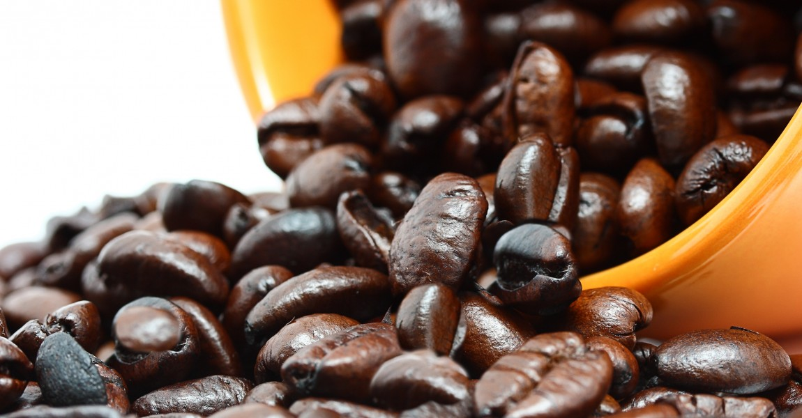 Coffee Beans In A Mug Representing Pure Fresh Roasted Brewed Coffee